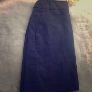 Luxe Banana Republic Pencil Skirt w/ Pockets 4P
